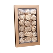 南北行特級厚身天白花菇皇禮盒450克